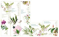 化粧品ライン ナチュラルEx /ハリウッド化粧品